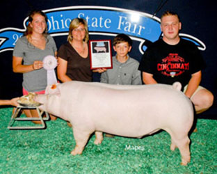 Schminke Showpig Winner